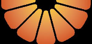 tang_half_logo